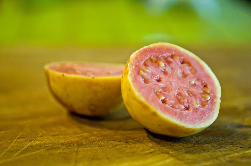 Mcb_100226_0116aweb guava